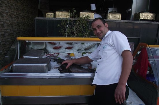 Shark : Great guy showing us the choice of fresh fish,