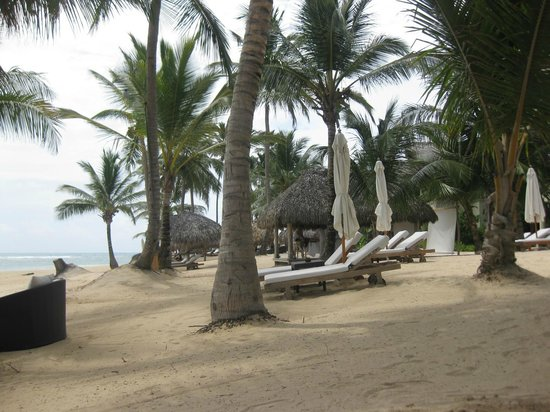 Zoetry Agua Punta Cana : Beach