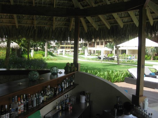 Zoetry Agua Punta Cana : Swim up Bar