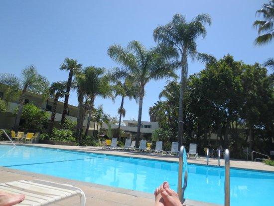 Lemon Tree Inn : Poolarea