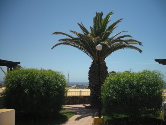 Caleta Dorada: view from bungalow