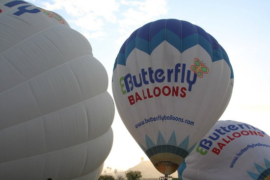 Butterfly Balloons : Balloons inflating
