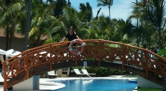 Majestic Elegance Punta Cana: Bridge over Elegance club pool near our room