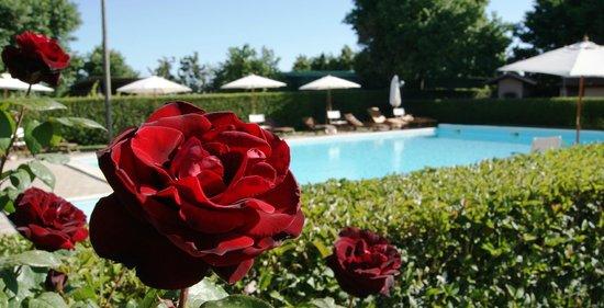 Casa Vacanze Ribocchi s.a.s. : piscina Ribocchi