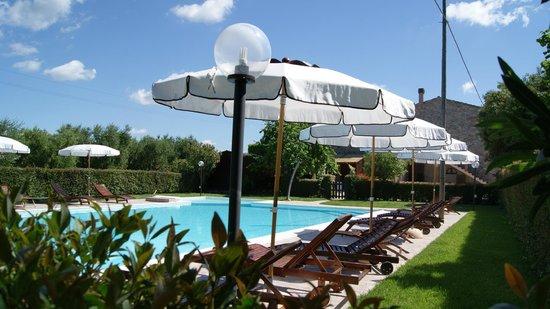 Casa Vacanze Ribocchi s.a.s. : Ombrelloni Piscina Ribocchi