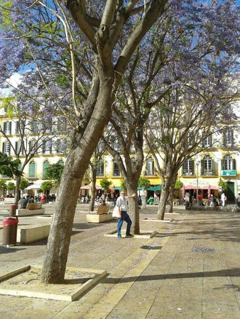 Plaza de la Merced: A beautiful old Spanish square