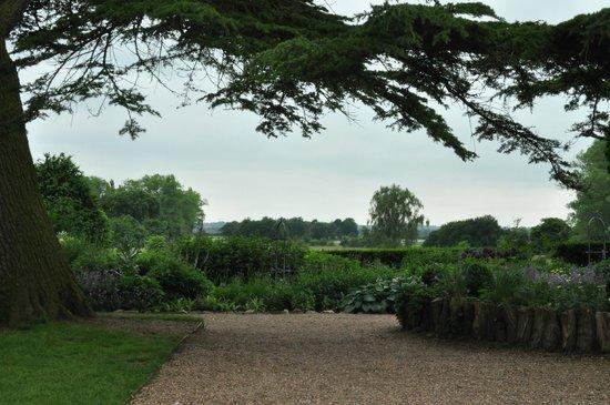 Charlecote Park: My Cream Tea View