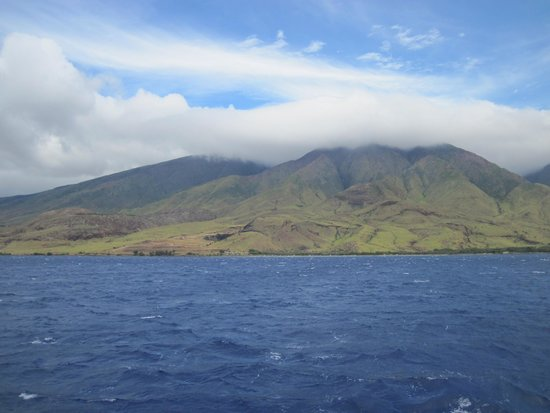 Pacific Whale Foundation : Green mountains of Maui