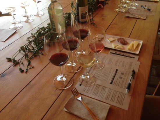 Healdsburg Wine Tours: Wine tasting at organic winery
