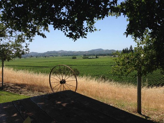 Healdsburg Wine Tours: Sid's favorite lunch spot for our picnic