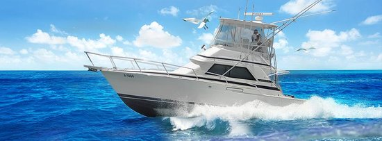 Living Easy Sport Fishing Charters