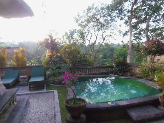 Pita Maha Resort and Spa: Private Pool