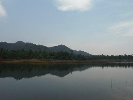 Rabeang Pasak Tree House Resort: Lake