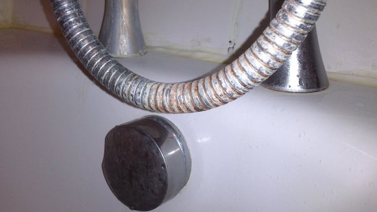 Langstone Hotel: Rusty shower hose