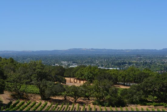 Paradise Ridge Winery : View from the tasting