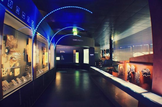 Museum of Natural History: Коридор музея