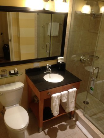 Renaissance Washington, DC Dupont Circle Hotel: Clean bathroom. Ample room.