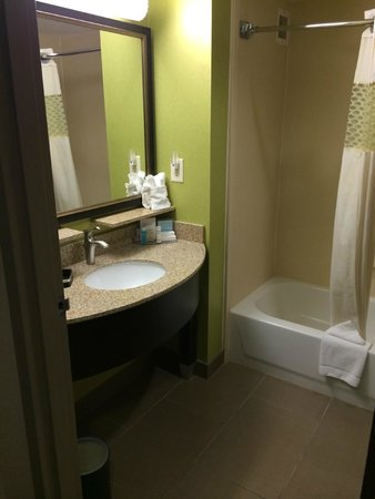 Hampton Inn Cumming : Bathroom