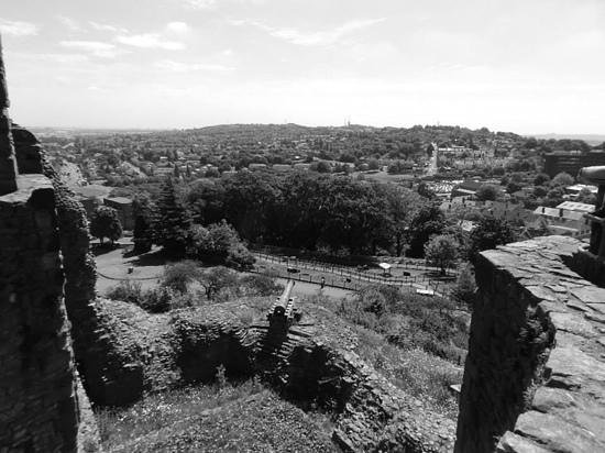 Dudley Zoo and Castle : Great view from the top of the castle