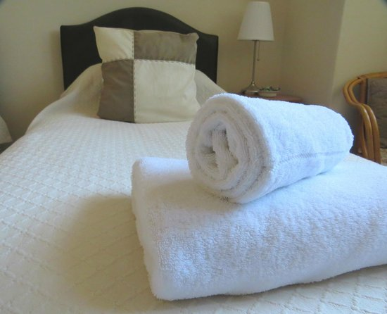 Craigmore Guest House : Twin room