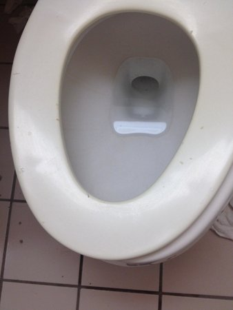 Extended Stay America - Jacksonville - Southside - St. Johns Towne Center: Dirty broken toilet seat