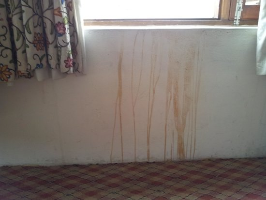 Shahenshah Palace Hotel: Stained walls in the room