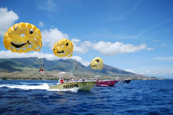 Ka'anapali, Havai: Our Fleet of Ocean Pro 31's -
