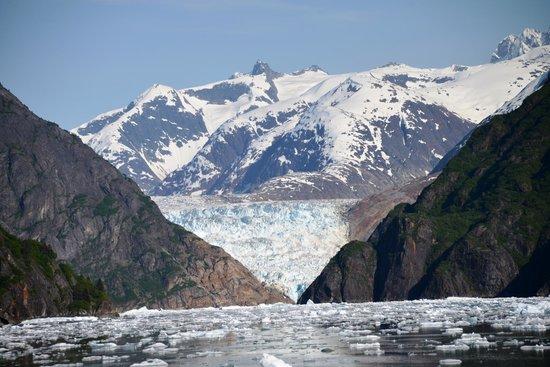 Tracy Arm Fjord : South Sawyer glacier