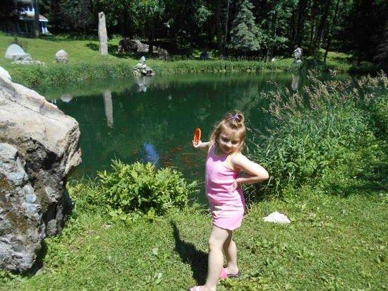 Columcille Megalith Park: koi pond