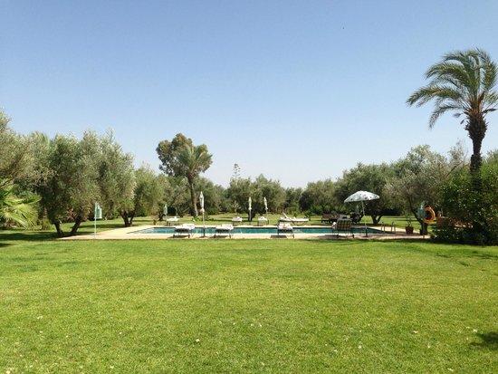 Dar Kantzaro: piscine dans le jardin