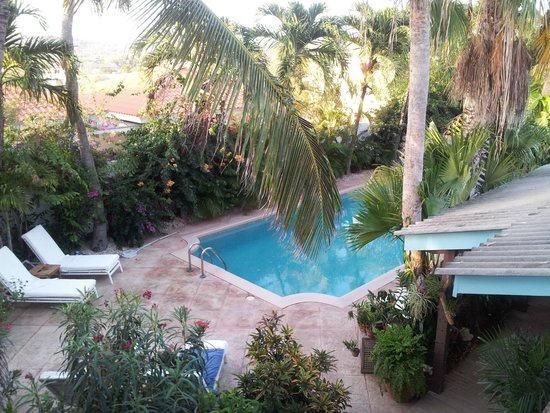 Paradera Park Aruba : beautiful garden & pool