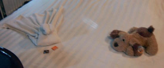 Hotel Biskajer Adults Only: towel swan and birthday puppy dog