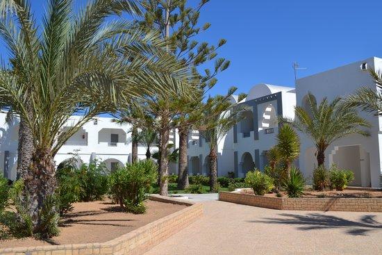 Hotel Cedriana: jardin
