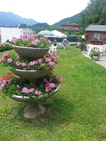 Sandro Hotel & Dependance: Il rilassante giardino