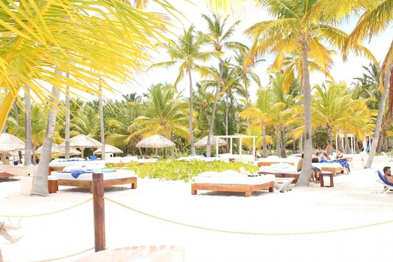 Catalonia Bavaro Beach, Casino & Golf Resort : Beach