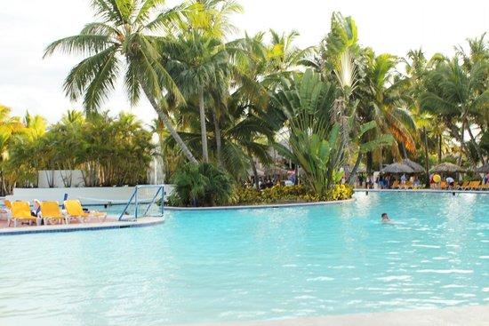 Catalonia Bavaro Beach, Casino & Golf Resort: Pool