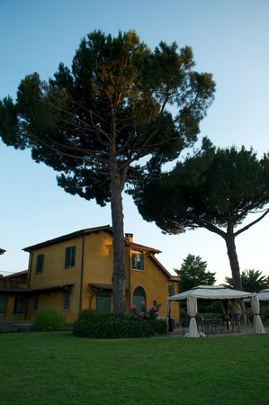 Hotel Selva Candida: Территория
