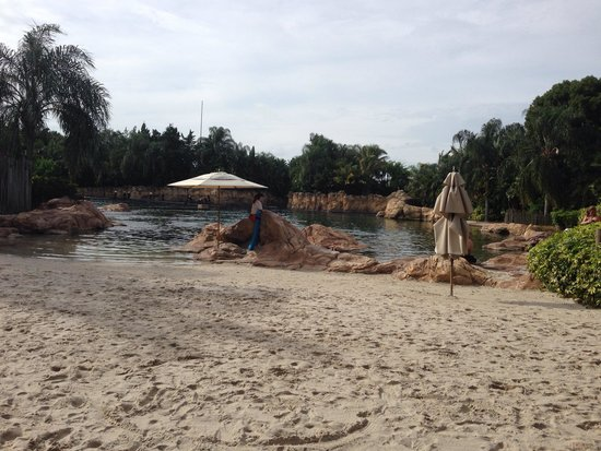 Discovery Cove: Discovery Covr