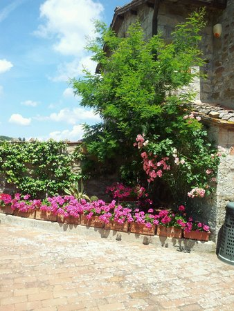 Casale San Lorenzo: У хозяйки кругом прекрасные цветы
