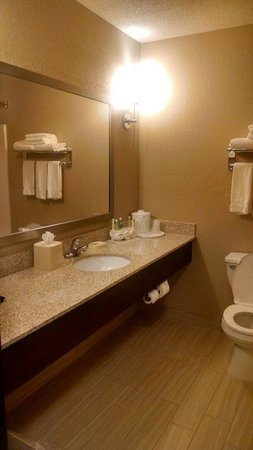 Holiday Inn Express Minneapolis-Minnetonka: Nice tile and finishes.