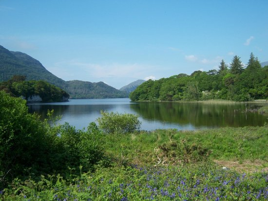 Muckross House, Gardens & Traditional Farms : view over the lake from the home