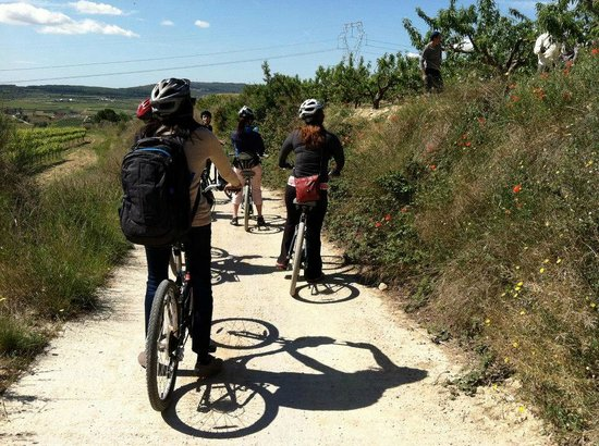 Spanish Trails by Alba Programas: Cycling through the Penendes region