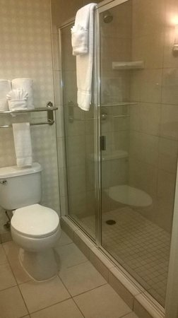 Hilton Garden Inn Omaha West: Spacious bathroom