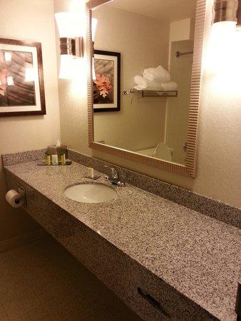President Abraham Lincoln Springfield - a DoubleTree by Hilton Hotel: Big bathroom vanity