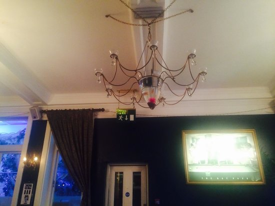 North Pole Piano Restaurant : Amazing light shade with gold fish!!