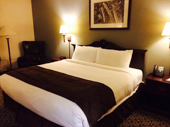 D. Hotel & Suites: Comfortable king-sized bed
