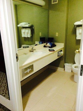 D. Hotel & Suites: Bathroom vanity