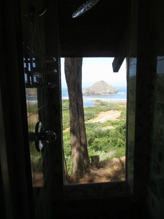 The Elk Cove Inn & Spa: The view from the shower. Literally. :-)