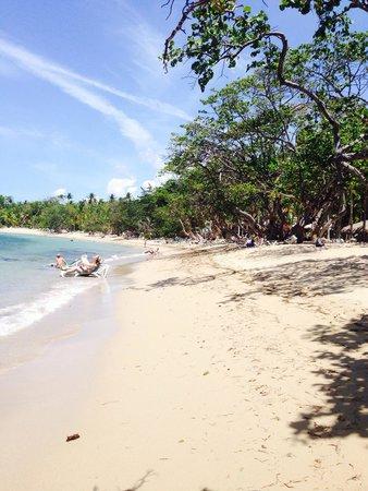 ClubHotel Riu Bachata: Riu bachata beach