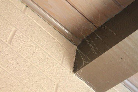 Sierra Lodge: cobwebs everywhere!!!!